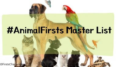AnimalFirsts Master List